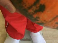 かぼちゃ2重さ